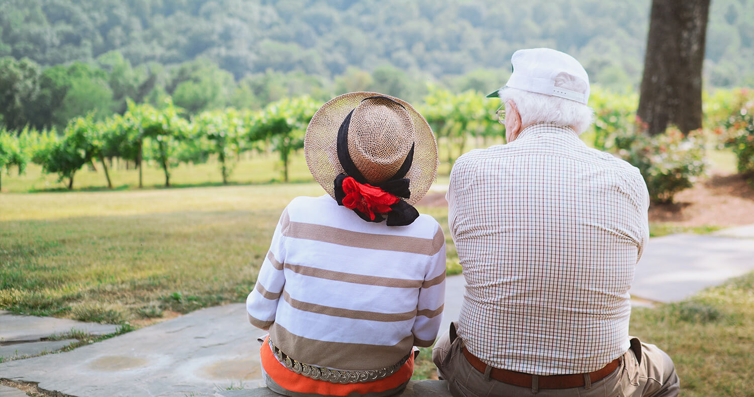 IPFM Pension - grandparents looking over valley